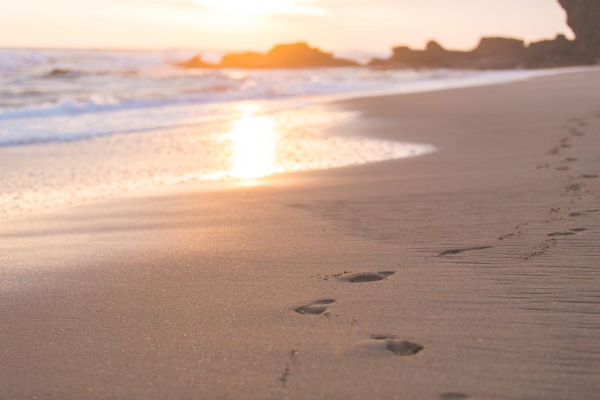 WYWH-Megan-Gardner-my place of solitude-Mornington peninsula-Australia-Wk32