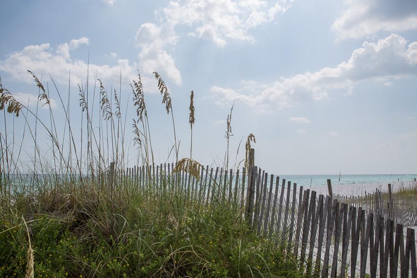 kaypickens-sea-oats-destin-FL-wk33-4223