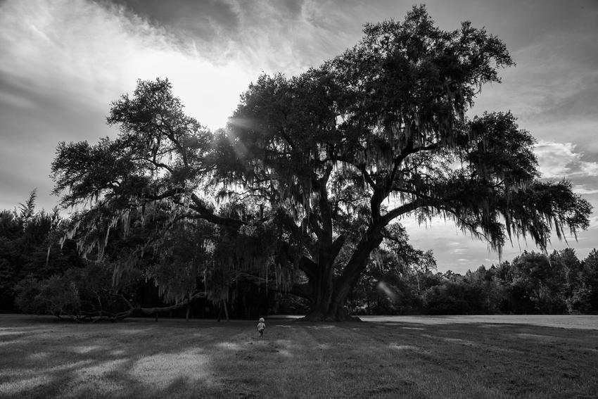 Amanda-ODonoughue-A-little-perspective-Gainesville-Florida-WK37