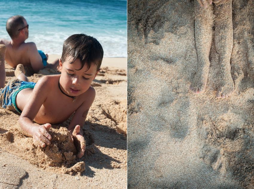 StacieAnnSmith_SandCrab_Hawaii