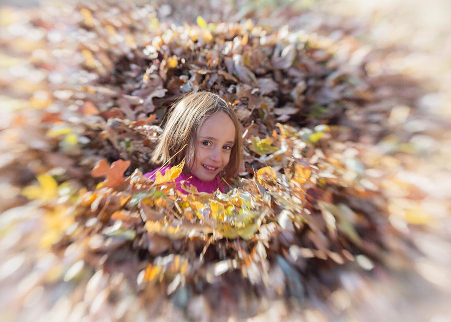 gingerwillard_thankful.for.autumn.leaf.piles.virginia.wk46