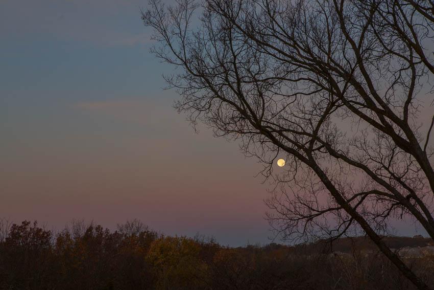 kaypickens-moonset-Missouri-wk44-4571