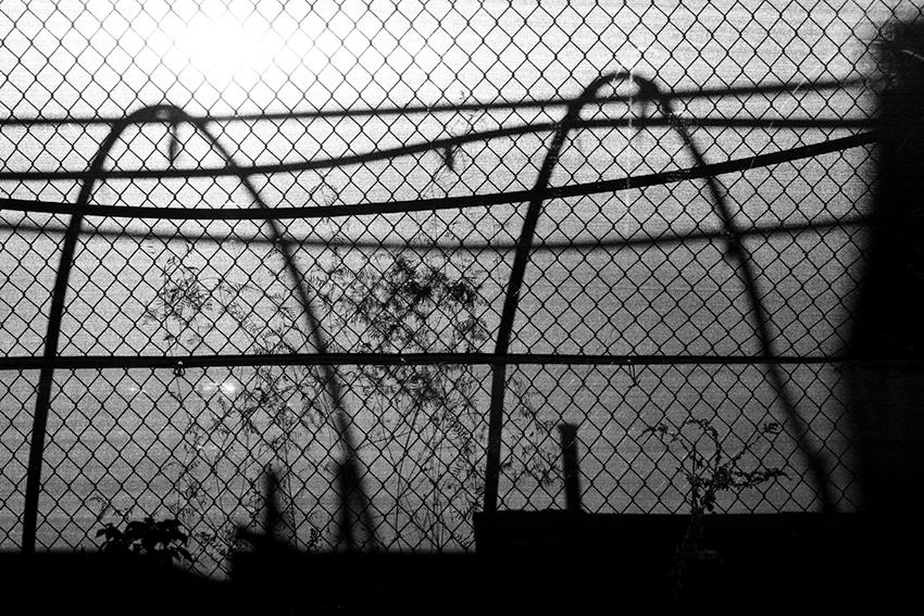 pamelajoye_wk45-hoops-&-lines-massachusetts