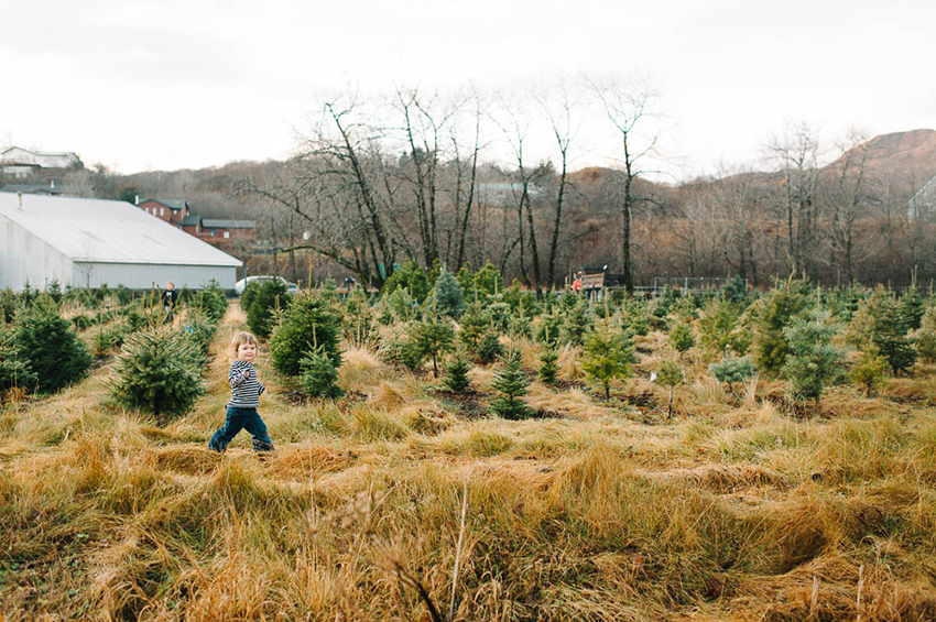 02-breannapeterson.the tree farm. alaska