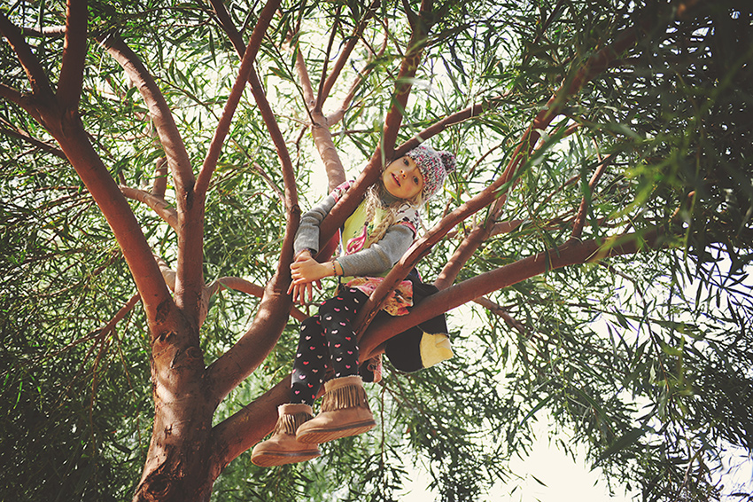 Kirsty-Larmour-Week11-Indy-in-a-tree-Middle-Atlas-Morocco