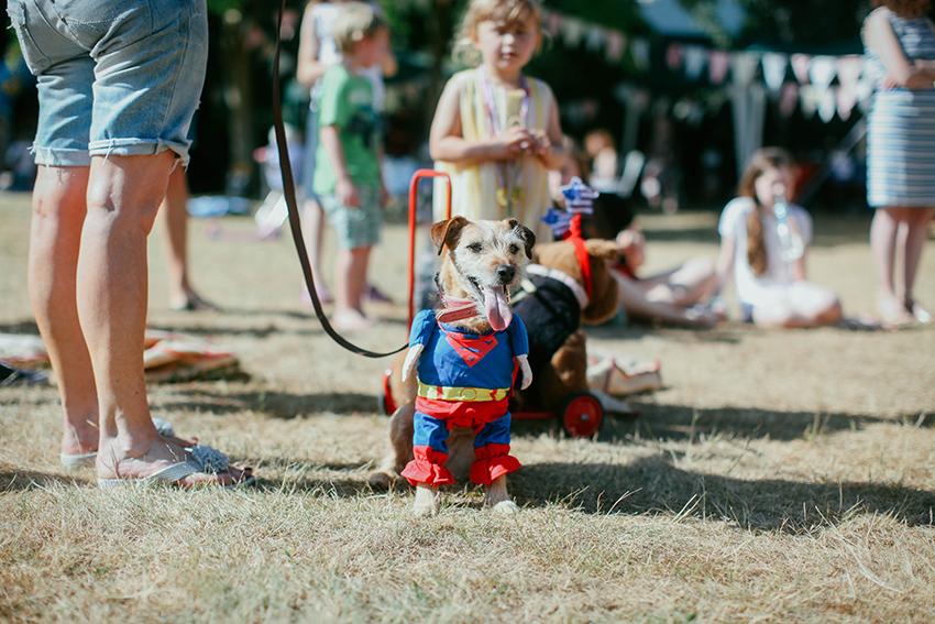 lili.love.dogshow.england