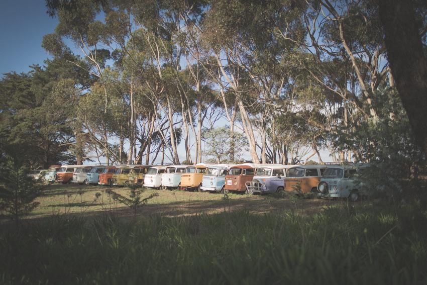 WYWH-Megan-Gardner-Wk45-Kombi History-Bellarine Peninsula-Australia