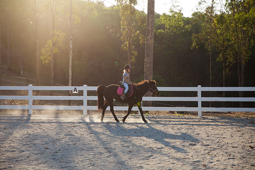 amandafraser_horseridinglessons_brisbane_wk44