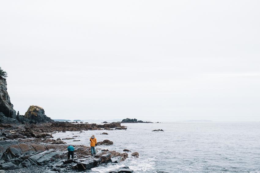 06-breannapeterson-tidepooling-alaska