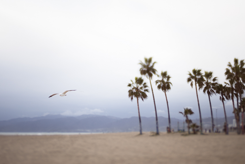 DebSchwedhelm-VeniceBeach-California
