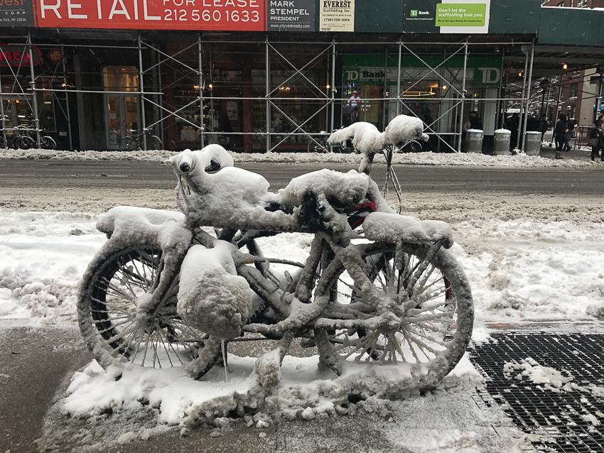 colleenputman_Frozen in Manhattan_New York