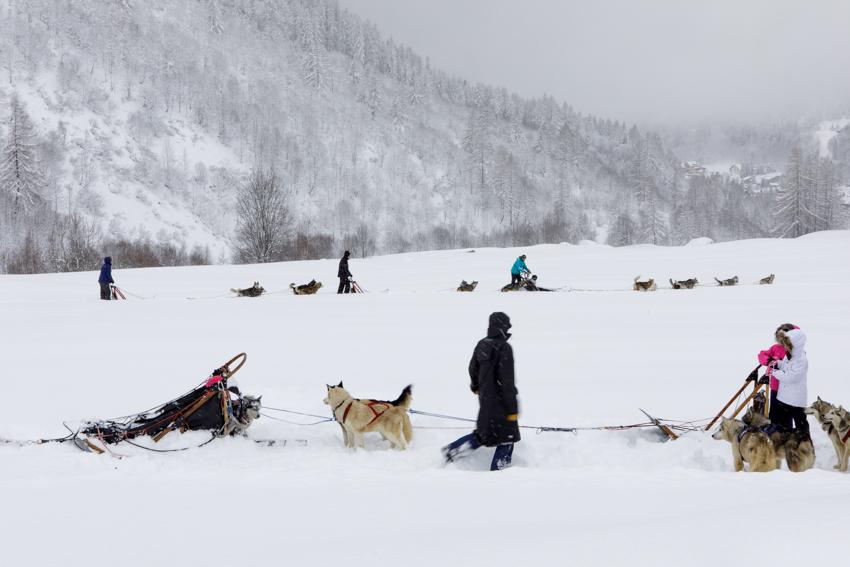 jaroszkristine9_Chamonix Huskies_Chamonix_France