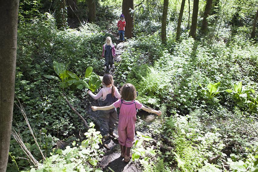 MeghanHof-ForestKindergarten-Oregon