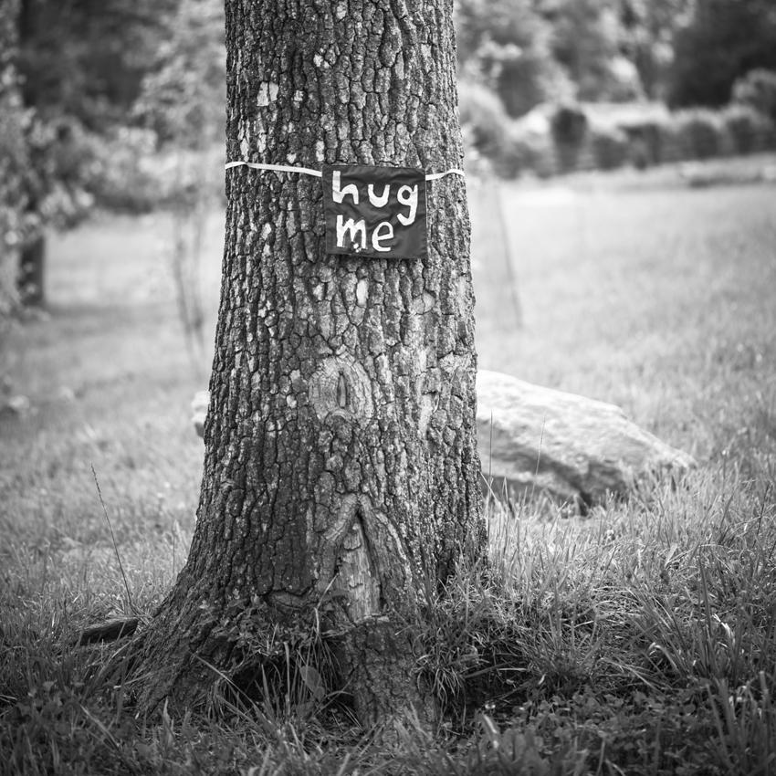 19beckyventeicher_hug me, Virginia