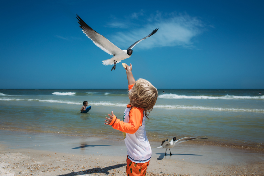 Amanda-ODonoughue-Sam and the gull-Apalachicola-FL