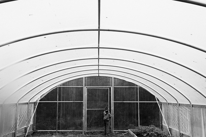 breanna peterson. the hoophouse. alaska (1 of 1)