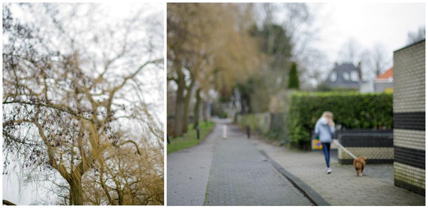 jaroszk3_winter walk_Wassenaar_the netherlands