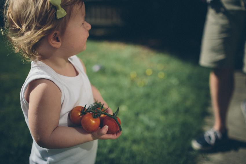 The first tomatoes-Frankston, Australia-Megan-Gardner-Wk5